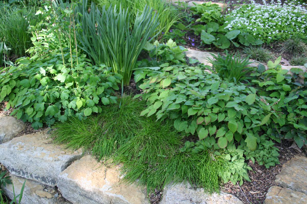 Garden Weavers for Living Mulch, Nebraska Extension Acreage Insights for July 2, 2018, http://communityenvironment.unl.edu/garden-weavers