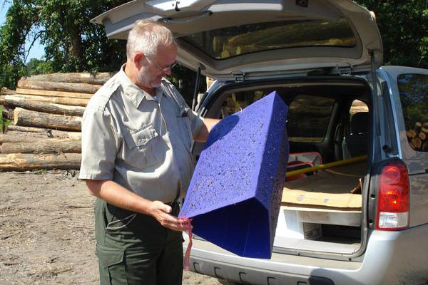 Emerald Ash Borer – Confirmed in Lincoln, Nebraska Extension Acreage Insights for Sept. 4, 2018. https://communityenvironment.unl.edu/eab-lincoln