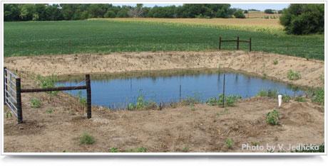 Residential Lagoon Maintenance, Nebraska Extension Acreage Insights May 2017. http://acreage.unl.edu/enews-may-2017
