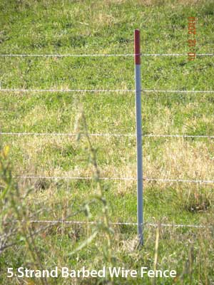5-strand barbed wire fence